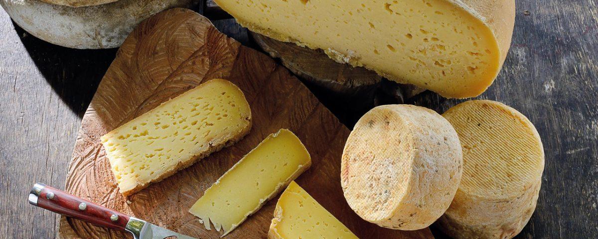 A saga de uma mestre queijeira